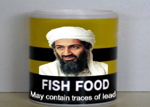 New Fish Food
